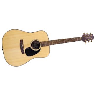 Western Gitarr